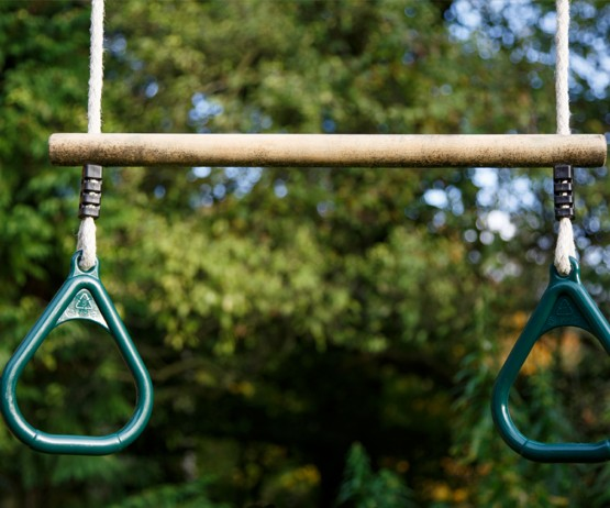 garden play trapeze bar and rings