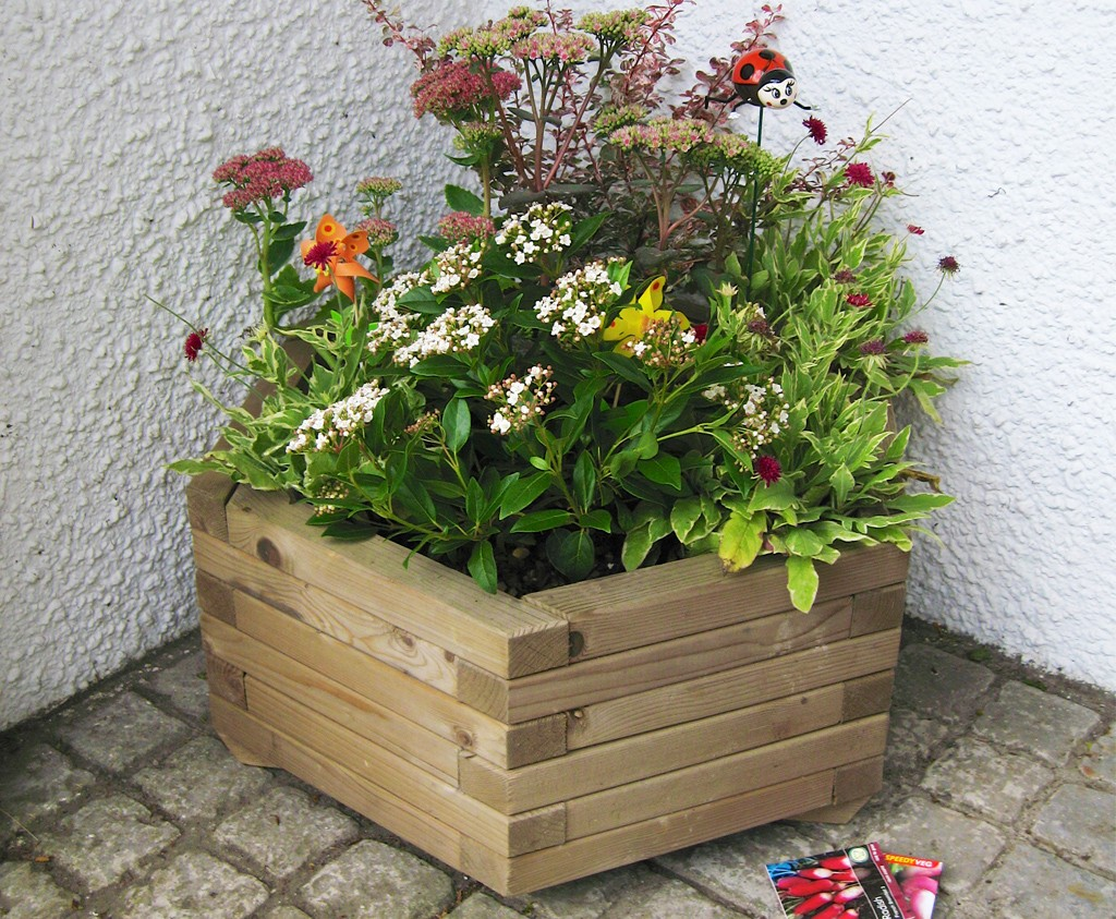 Large Hexagonal Planter for the garden