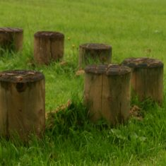 Stepping Log Columns for schools Stepping Log Columns for commercial use