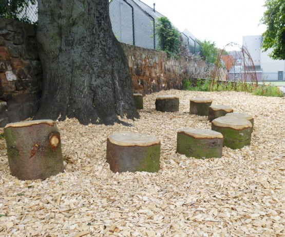 Rustic Log Stump for schools