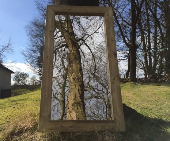 Outdoor Mirror