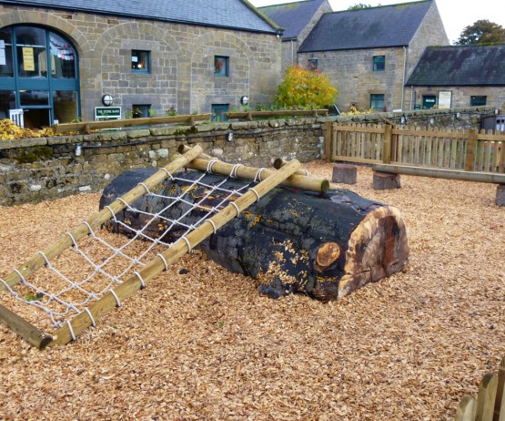 Woodchip and Bark for schools