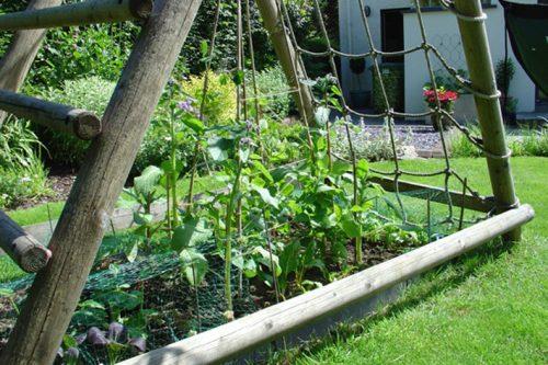 garden play gallery image veggie patch