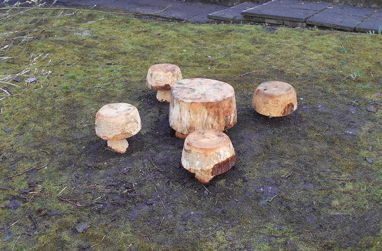 mushroom stools and table