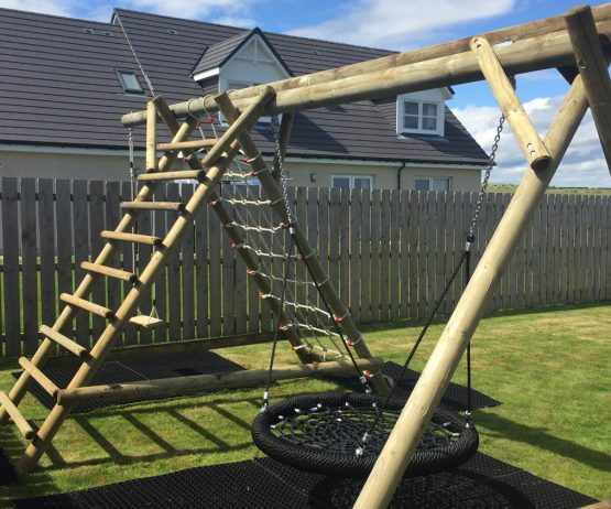 Family Basket Swing with Ladder and Net Extension