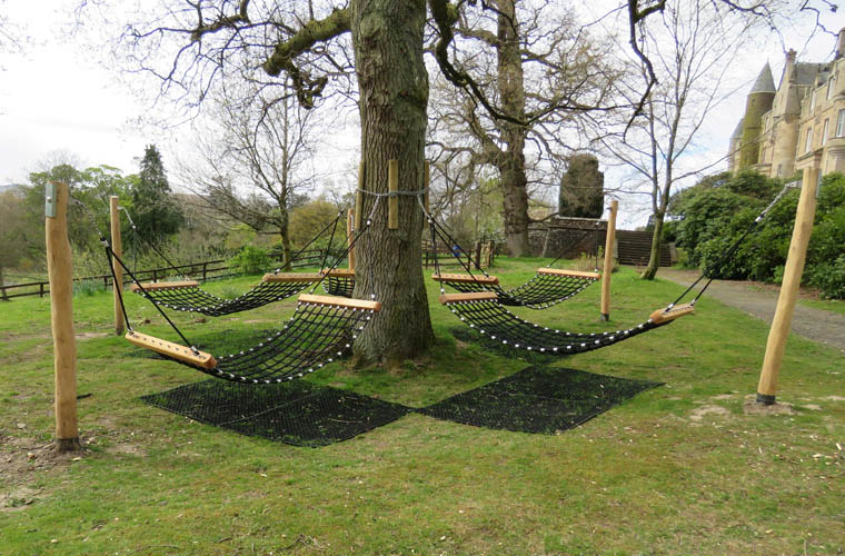 Hammock swings around an established tree
