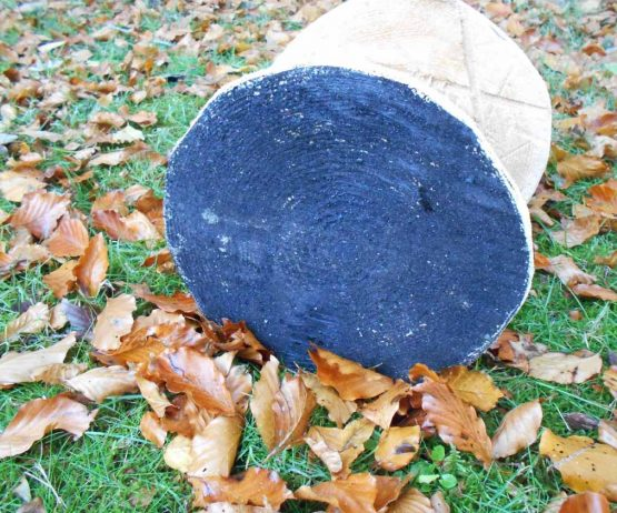 Mushroom Stool For The Garden Wooden Climbing Frames And