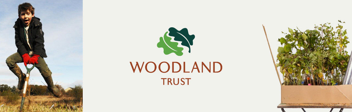 News Woodland Trust Banner Image Free Trees
