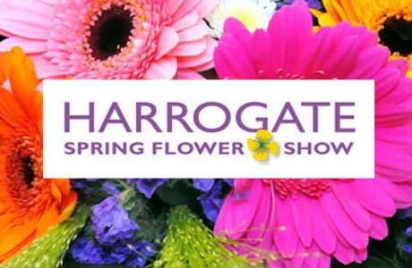 Come and see us at the Harrogate Spring Flower Show