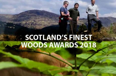 news item SFWA 2018 banner image Scotland's Finest Woods Awards - still time to enter.