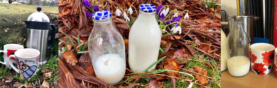 Every little helps.. news item milk bottles banner image