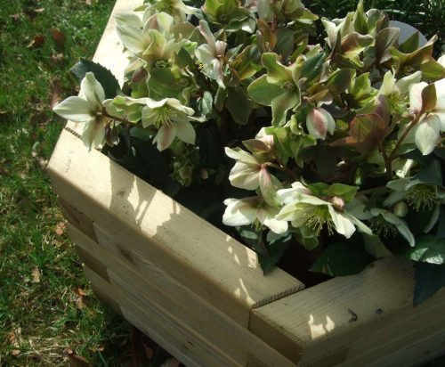 garden play small hex planter product listing image