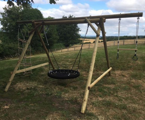 Family Basket Swing with Double Extension