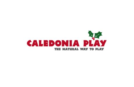 news banner image Christmas logo